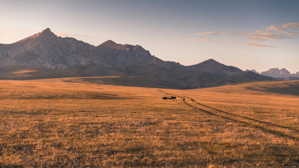 Kirghizistan-26b.jpg